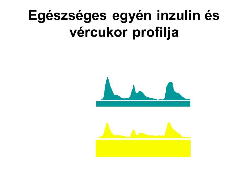 Az inzulin útja a szervezetben Egészséges szervezetben: pancreas  v.