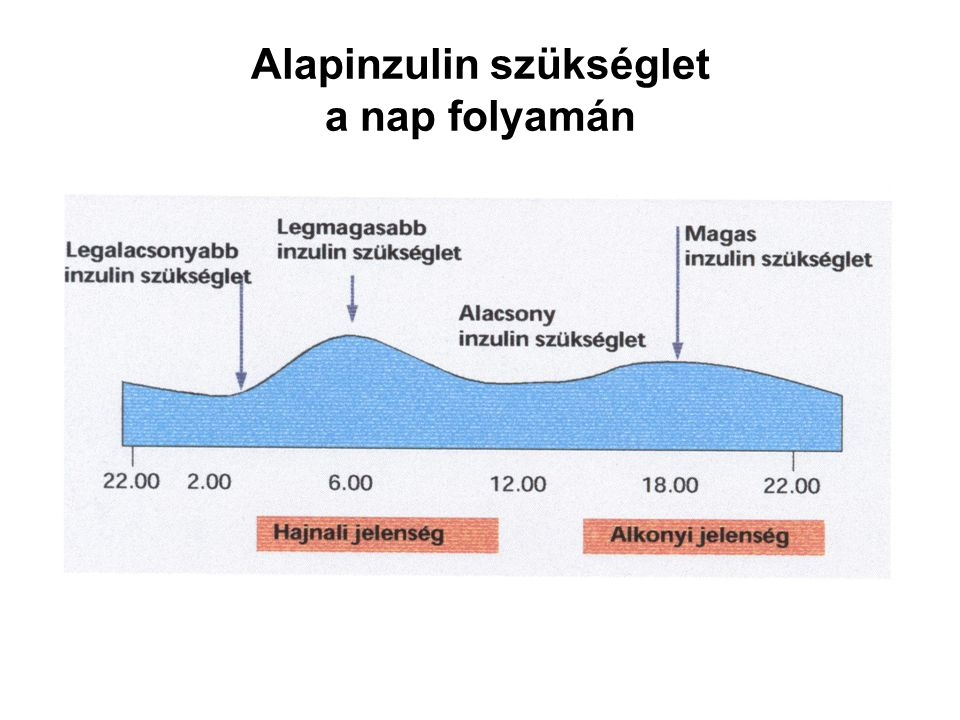 Alapinzulin szükséglet a nap folyamán
