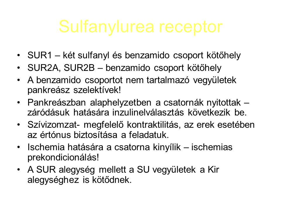 Sulfanylureák glibenclamid – SUR1, SUR2 hatás, az ischemias prekondicionálást gátolja, helyre állítja a megrövidült akcióspotenciált glimeprid – bár nem pankreász szelektív, nem befolyásolja az ischemias prekondicionálást gliclazid – pankreász szelektív, aminoazobiciklo-oktan oldallánc: - antioxidáns hatás: lipidperoxid↓, superoxid-dizmutáz aktivitás megtartott - kedvező haemorheologiai hatás gliquidon – a vesén keresztül ürül ki