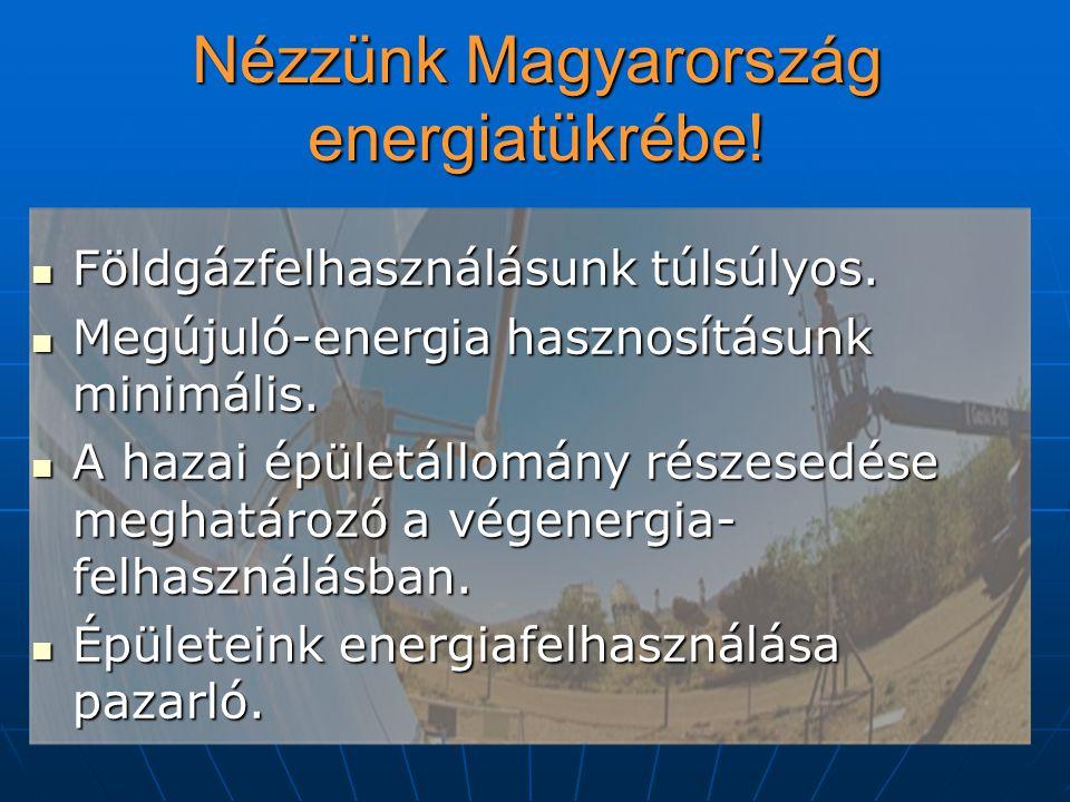 Nézzünk Magyarország energiatükrébe. Földgázfelhasználásunk túlsúlyos.
