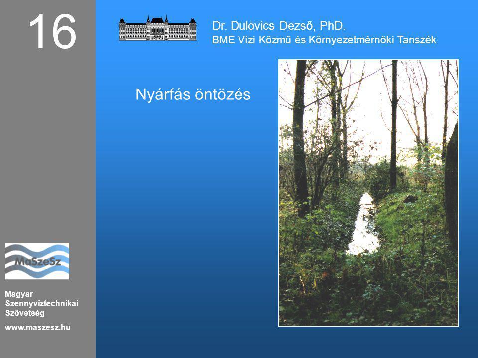 Magyar Szennyvíztechnikai Szövetség www.maszesz.hu 16 Nyárfás öntözés Dr. Dulovics Dezső, PhD. BME Vízi Közmű és Környezetmérnöki Tanszék