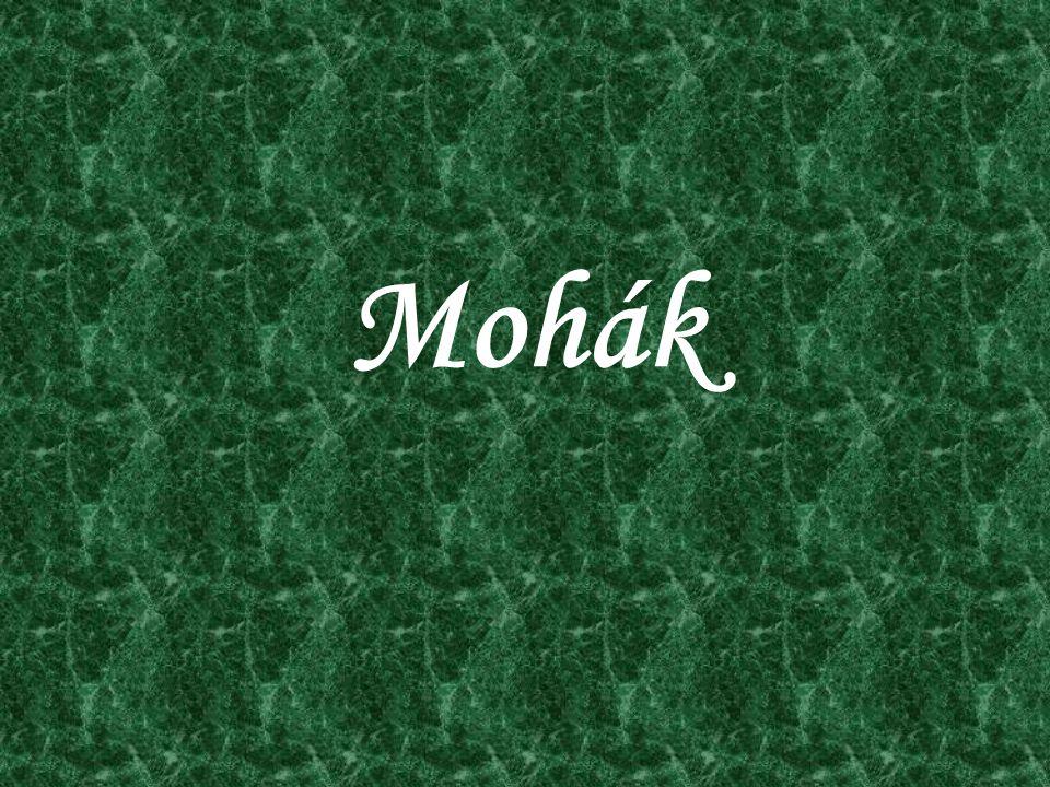 Mohák