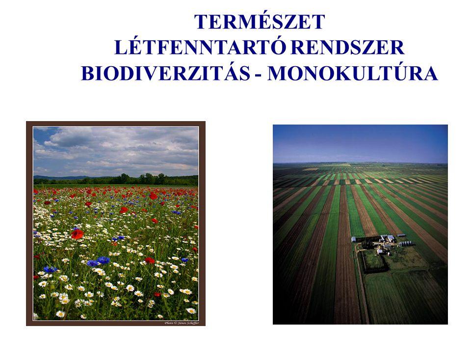 TERMÉSZET LÉTFENNTARTÓ RENDSZER BIODIVERZITÁS - MONOKULTÚRA