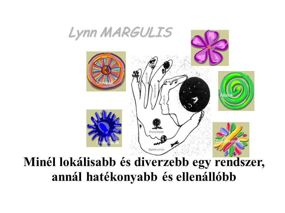 Lynn MARGULIS Protoctisták Baktériumok Állatok Gombák Növények Minél lokálisabb és diverzebb egy rendszer, annál hatékonyabb és ellenállóbb