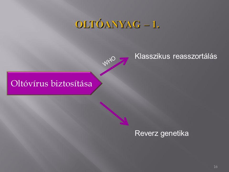 16 Oltóvírus biztosítása Klasszikus reasszortálás Reverz genetika WHO