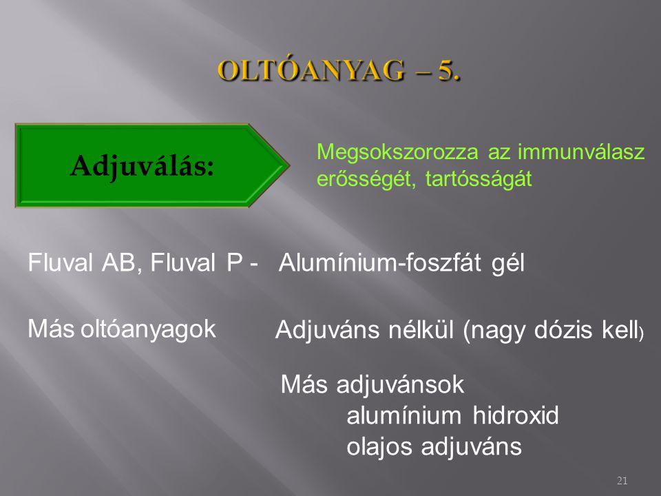 21 Adjuválás: Megsokszorozza az immunválasz erősségét, tartósságát Fluval AB, Fluval P - Alumínium-foszfát gél Más oltóanyagok Adjuváns nélkül (nagy dózis kell ) Más adjuvánsok alumínium hidroxid olajos adjuváns