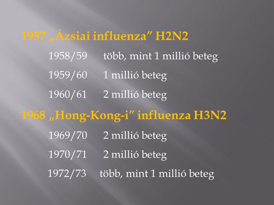 """1957 """"Ázsiai influenza H2N2 1958/59 több, mint 1 millió beteg 1959/601 millió beteg 1960/612 millió beteg 1968 """"Hong-Kong-i influenza H3N2 1969/702 millió beteg 1970/712 millió beteg 1972/73 több, mint 1 millió beteg"""