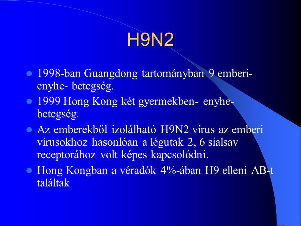 H9N2 1998-ban Guangdong tartományban 9 emberi- enyhe- betegség. 1999 Hong Kong két gyermekben- enyhe- betegség. Az emberekből izolálható H9N2 vírus az