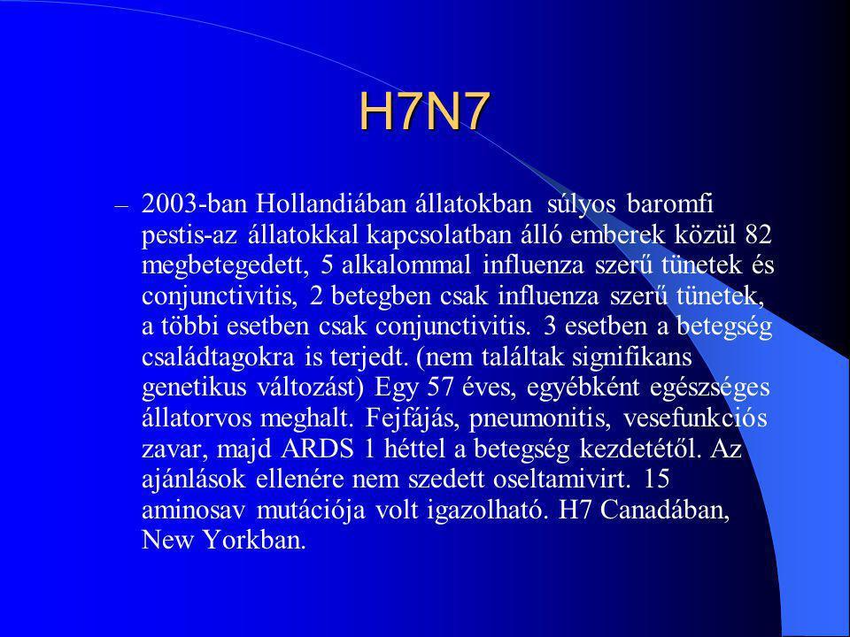 H7N7 – 2003-ban Hollandiában állatokban súlyos baromfi pestis-az állatokkal kapcsolatban álló emberek közül 82 megbetegedett, 5 alkalommal influenza s