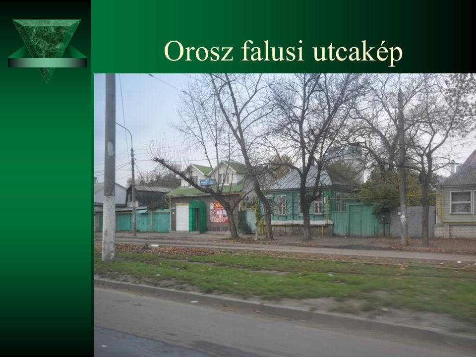 Orosz falusi utcakép