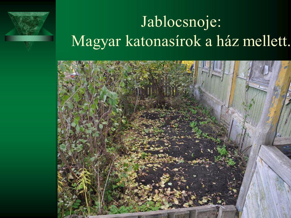Jablocsnoje: Magyar katonasírok a ház mellett.