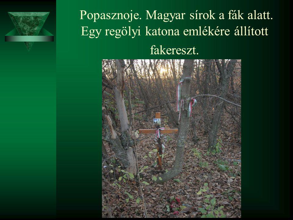Popasznoje. Magyar sírok a fák alatt. Egy regölyi katona emlékére állított fakereszt.