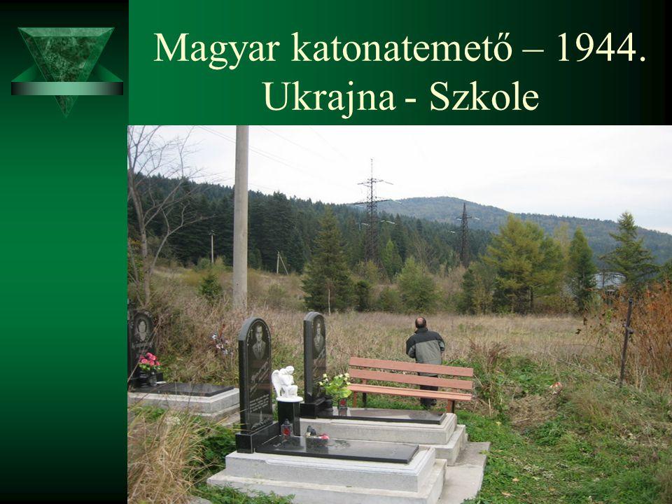 Magyar katonatemető – 1944. Ukrajna - Szkole