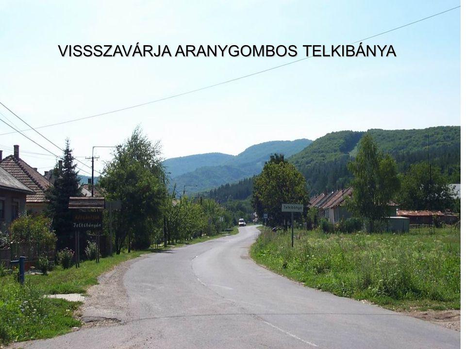 VISSSZAVÁRJA ARANYGOMBOS TELKIBÁNYA