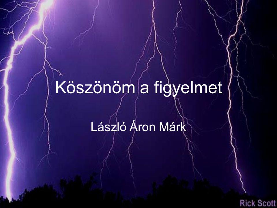Köszönöm a figyelmet László Áron Márk