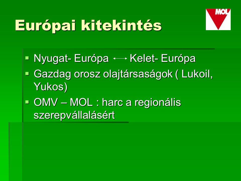 Európai kitekintés  Nyugat- Európa Kelet- Európa  Gazdag orosz olajtársaságok ( Lukoil, Yukos)  OMV – MOL : harc a regionális szerepvállalásért