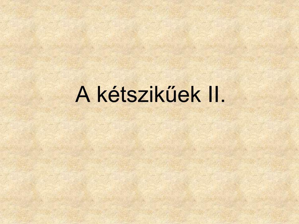 A kétszikűek II.