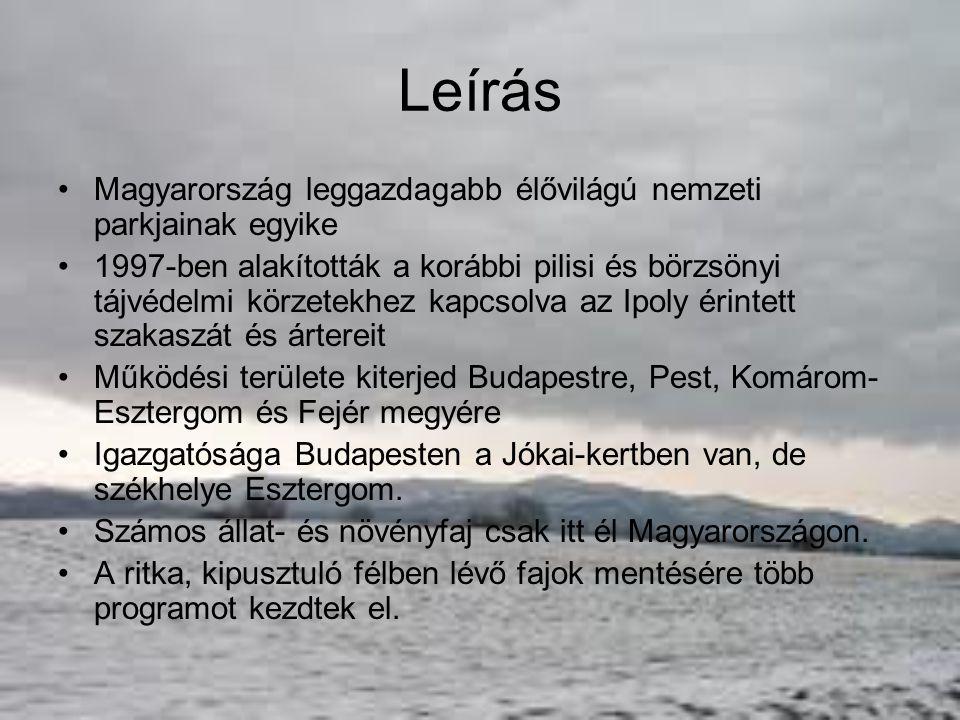 Földrajzi tájegységei Két nagy hegyvidéke: Börzsöny és a Dunazug-hegység északkeleti része: Visegrádi-hegység, Pilis, Budai-hegység A hegyvidékeket a Dunakanyar választja el egymástól.