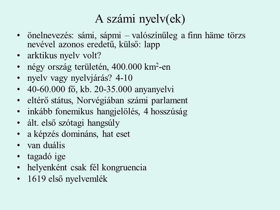 A számi nyelv(ek) önelnevezés: sámi, sápmi – valószínűleg a finn häme törzs nevével azonos eredetű, külső: lapp arktikus nyelv volt? négy ország terül