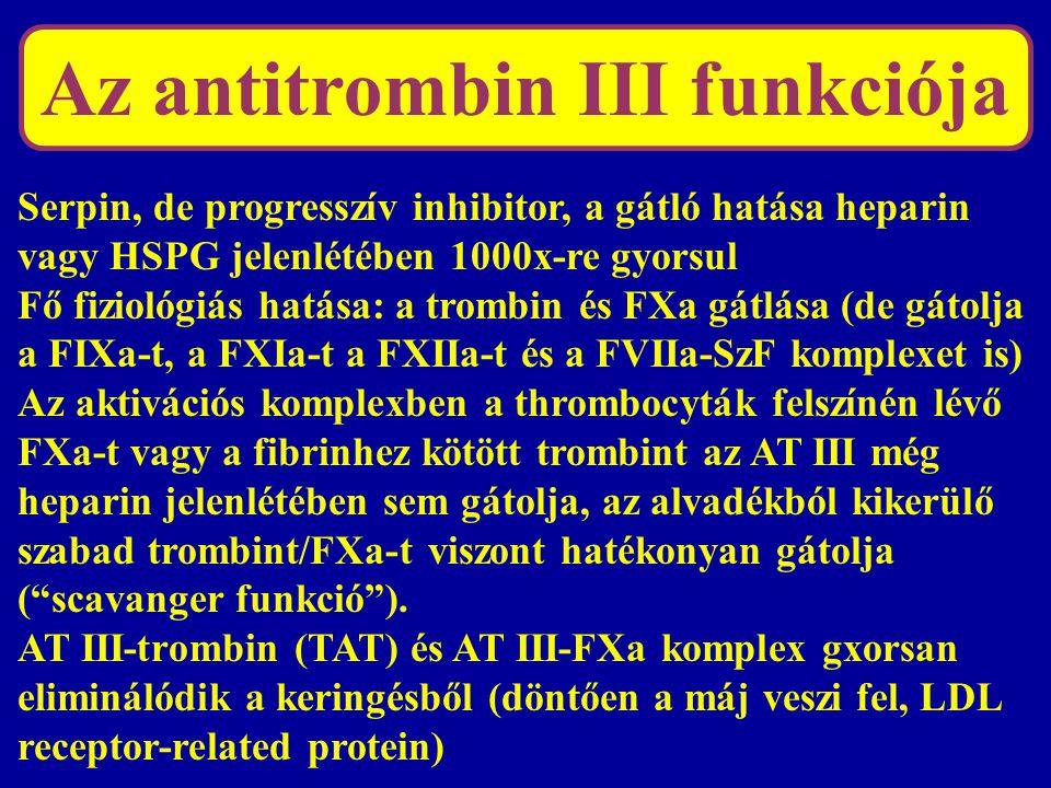 Heparin-AT III kölcsönhatás Heparin: szulfatált glükózaminoglikán Nem frakcionált heparin: 7-25.000 D Az AT III-mal való kölcsönhatásban döntő a szulfatált pentasaccharid egység (HPSPG-ben is ez van) Magas és alacsony ms-ú frakciók.