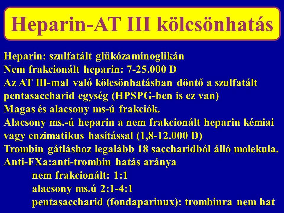 Heparin-AT III kölcsönhatás Heparin: szulfatált glükózaminoglikán Nem frakcionált heparin: 7-25.000 D Az AT III-mal való kölcsönhatásban döntő a szulf
