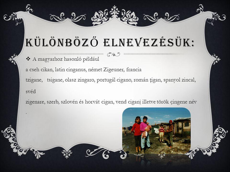  A magyarhoz hasonló például a cseh cikan, latin cinganus, német Zigeuner, francia tzigane, tsigane, olasz zingaro, portugál cigano, román ţigan, spa
