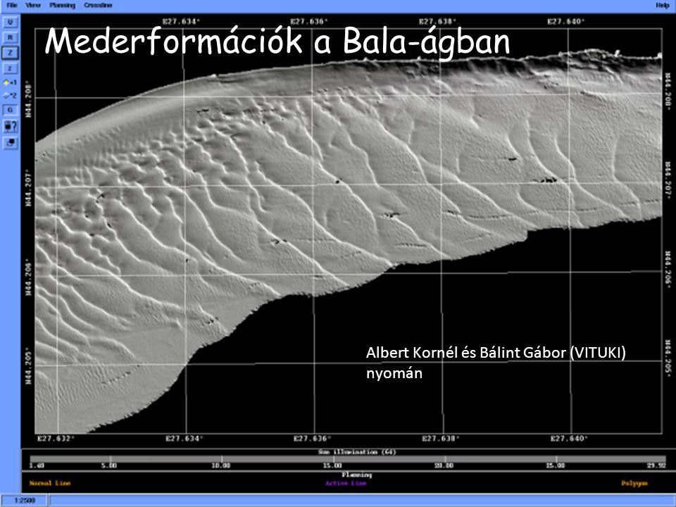 Mederformációk a Bala-ágban Albert Kornél és Bálint Gábor (VITUKI) nyomán