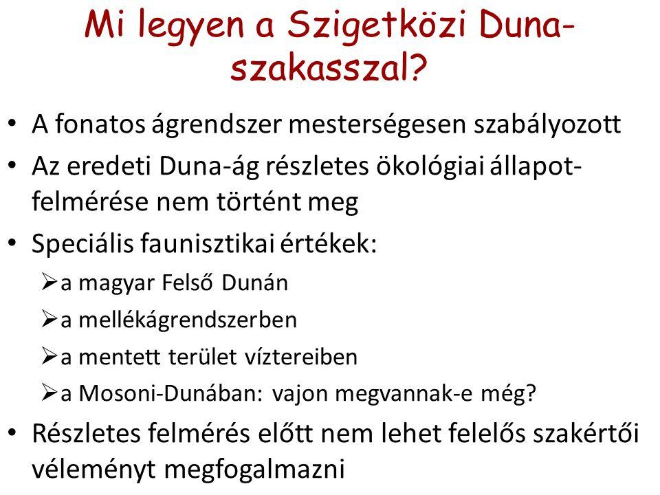 Mi legyen a Szigetközi Duna- szakasszal.