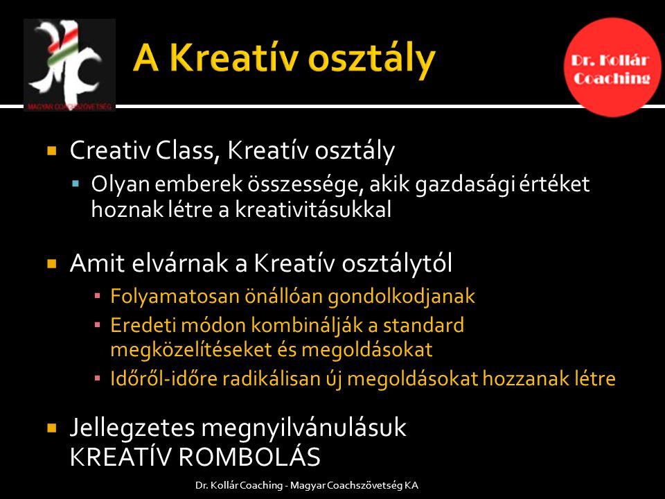  Creativ Class, Kreatív osztály  Olyan emberek összessége, akik gazdasági értéket hoznak létre a kreativitásukkal  Amit elvárnak a Kreatív osztálytól ▪ Folyamatosan önállóan gondolkodjanak ▪ Eredeti módon kombinálják a standard megközelítéseket és megoldásokat ▪ Időről-időre radikálisan új megoldásokat hozzanak létre  Jellegzetes megnyilvánulásuk KREATÍV ROMBOLÁS Dr.