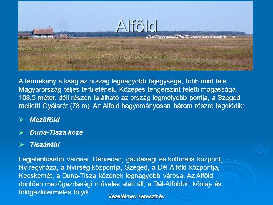 Vezetéknév Keresztnév Alföld A termékeny síkság az ország legnagyobb tájegysége, több mint fele Magyarország teljes területének. Közepes tengerszint f