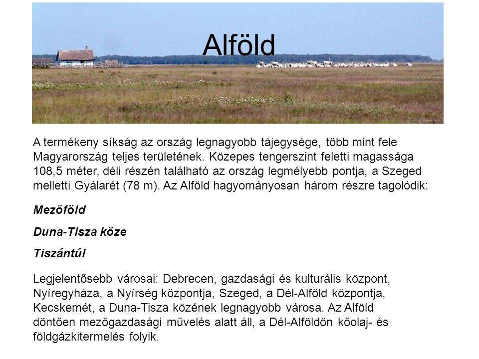 Alföld A termékeny síkság az ország legnagyobb tájegysége, több mint fele Magyarország teljes területének. Közepes tengerszint feletti magassága 108,5