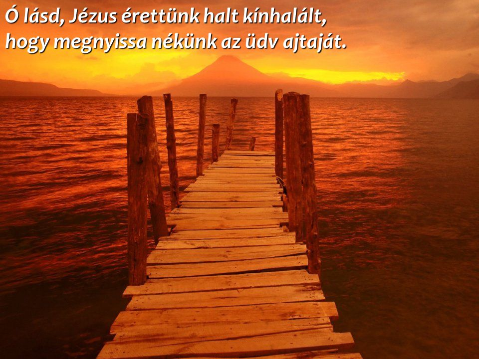 Ó lásd, Jézus érettünk halt kínhalált, hogy megnyissa nékünk az üdv ajtaját.