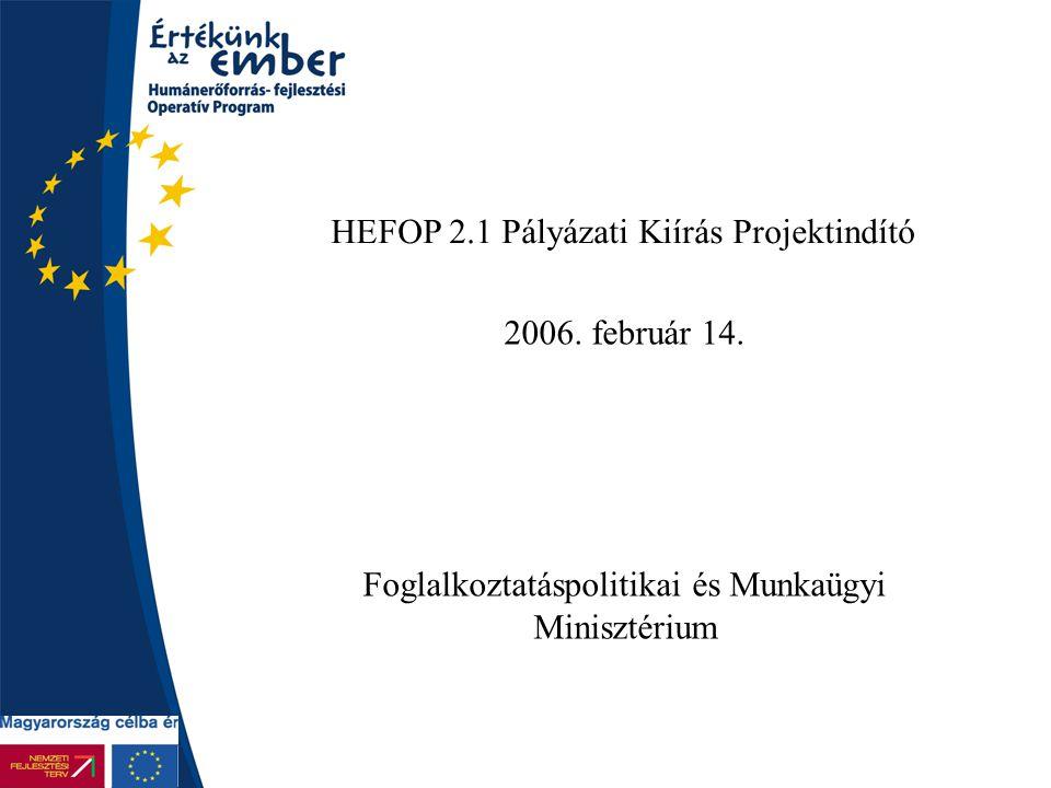 HEFOP 2.1 Pályázati Kiírás Projektindító 2006. február 14. Foglalkoztatáspolitikai és Munkaügyi Minisztérium