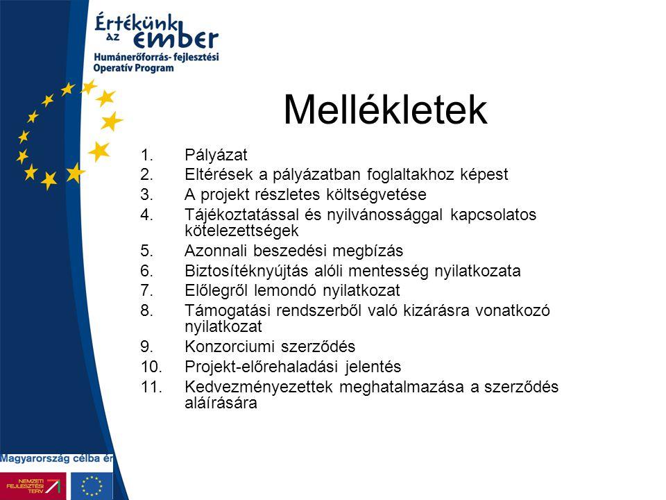 Mellékletek 1.Pályázat 2.Eltérések a pályázatban foglaltakhoz képest 3.A projekt részletes költségvetése 4.Tájékoztatással és nyilvánossággal kapcsola