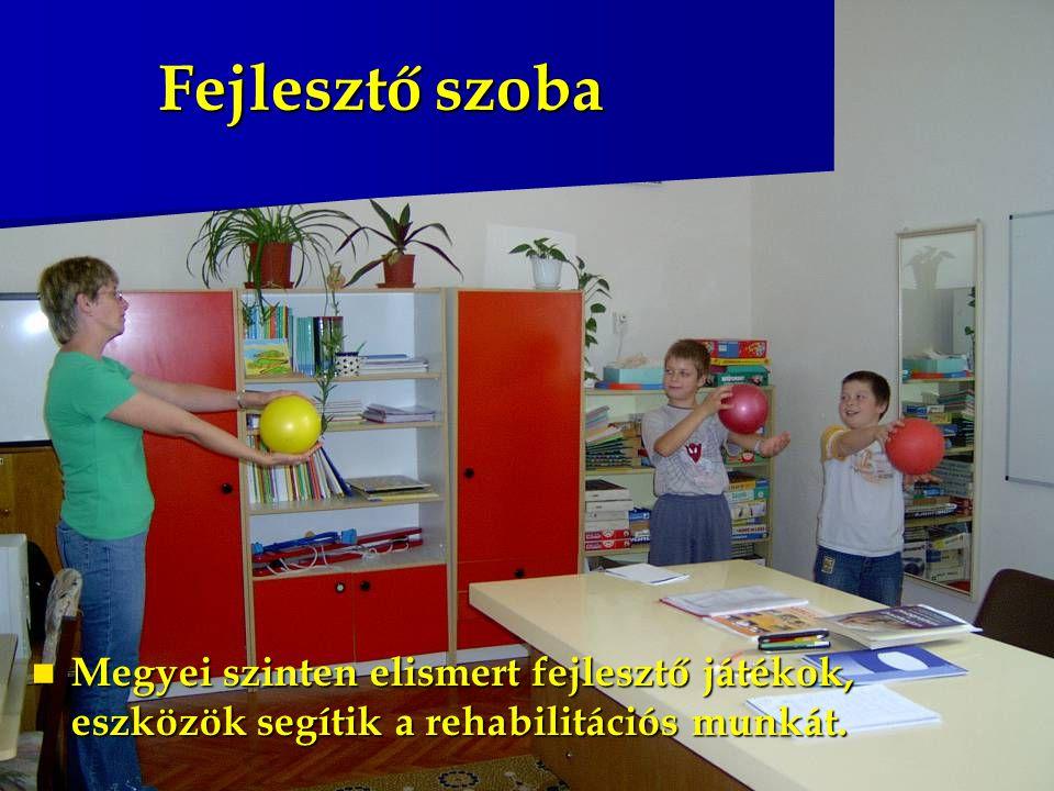 Fejlesztő szoba Megyei szinten elismert fejlesztő játékok, eszközök segítik a rehabilitációs munkát. Megyei szinten elismert fejlesztő játékok, eszköz