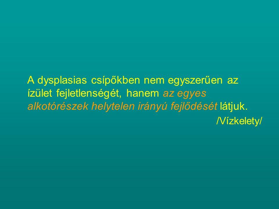 A dysplasias csípőkben nem egyszerűen az ízület fejletlenségét, hanem az egyes alkotórészek helytelen irányú fejlődését látjuk. /Vízkelety/