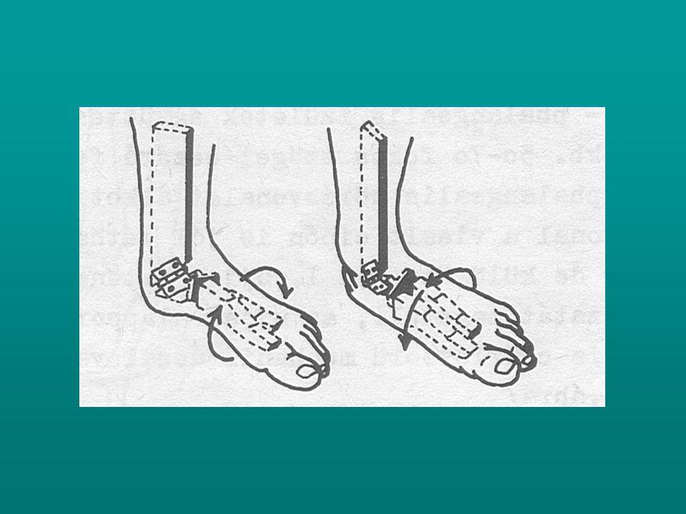 Működése alapján az alsó ugróízület mozgástengelye egy jobb- illetve balmenetes csavarnak felel meg.
