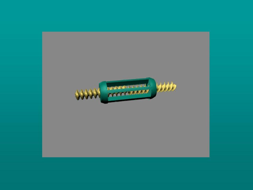 Ha a lábszár berotalódik, a calcaneovalgitás fokozódik, a tarsus hosszabbodik, az előláb abductioba és eversióba kerül.