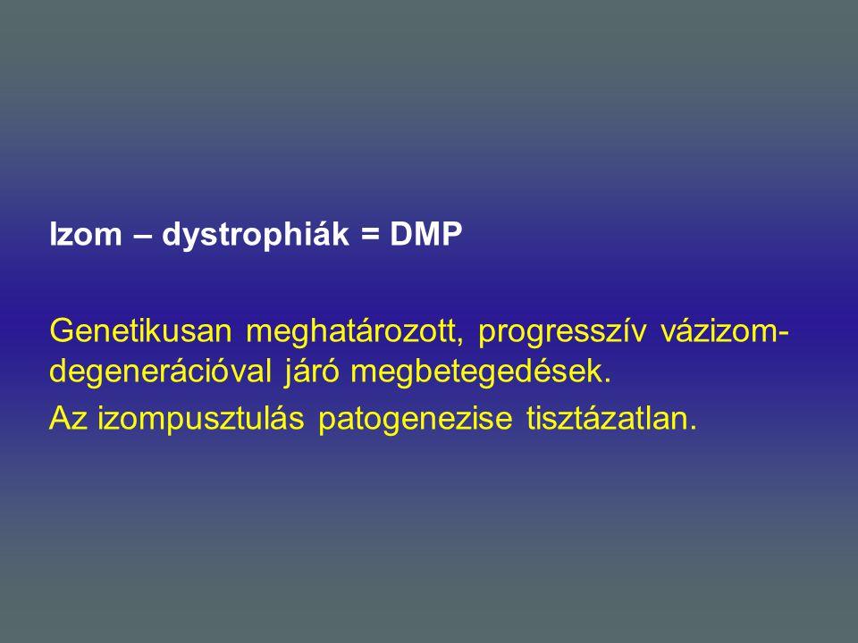 Izom – dystrophiák = DMP Genetikusan meghatározott, progresszív vázizom- degenerációval járó megbetegedések. Az izompusztulás patogenezise tisztázatla