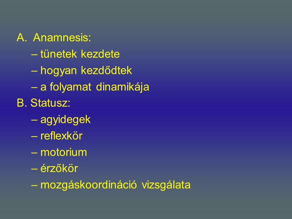 A.Anamnesis: –tünetek kezdete –hogyan kezdődtek –a folyamat dinamikája B. Statusz: –agyidegek –reflexkör –motorium –érzőkör –mozgáskoordináció vizsgál