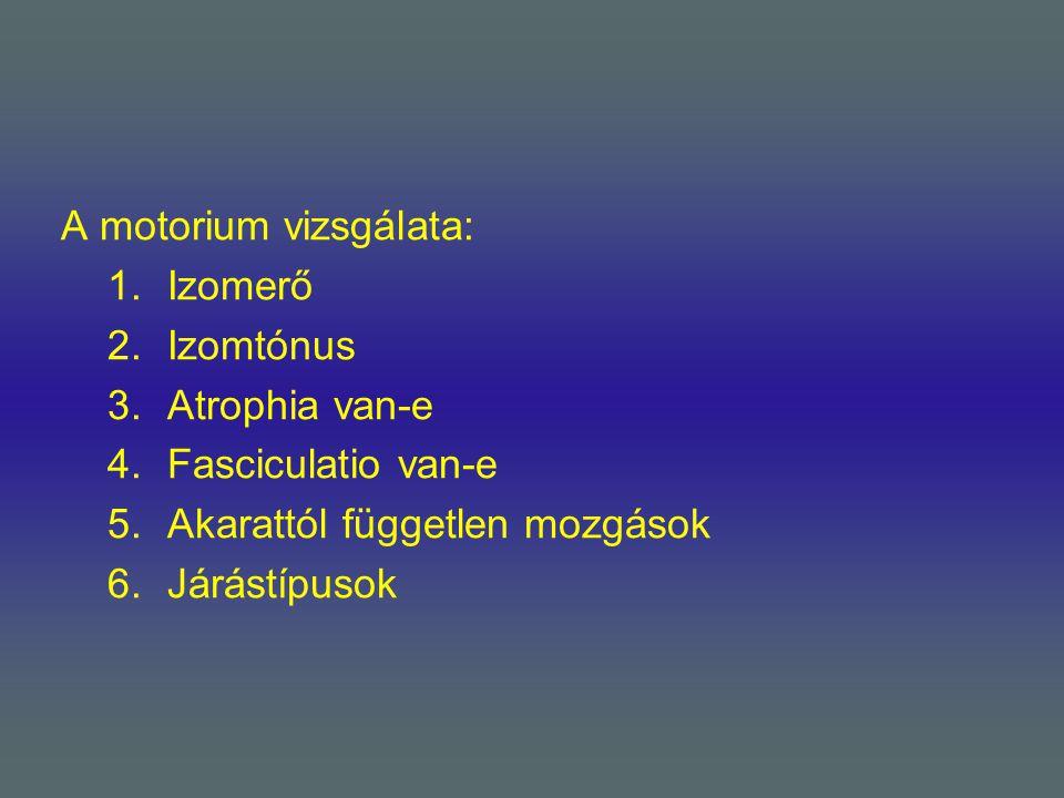 A motorium vizsgálata: 1.Izomerő 2.Izomtónus 3.Atrophia van-e 4.Fasciculatio van-e 5.Akarattól független mozgások 6.Járástípusok