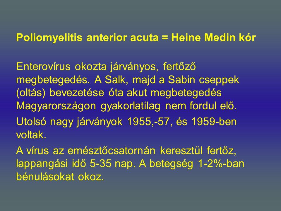 Poliomyelitis anterior acuta = Heine Medin kór Enterovírus okozta járványos, fertőző megbetegedés. A Salk, majd a Sabin cseppek (oltás) bevezetése óta