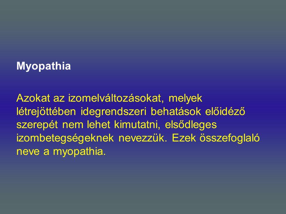 Myopathia Azokat az izomelváltozásokat, melyek létrejöttében idegrendszeri behatások előidéző szerepét nem lehet kimutatni, elsődleges izombetegségekn