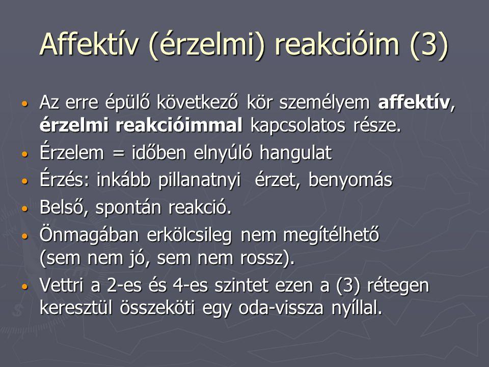 Affektív (érzelmi) reakcióim (3) Az erre épülő következő kör személyem affektív, érzelmi reakcióimmal kapcsolatos része.