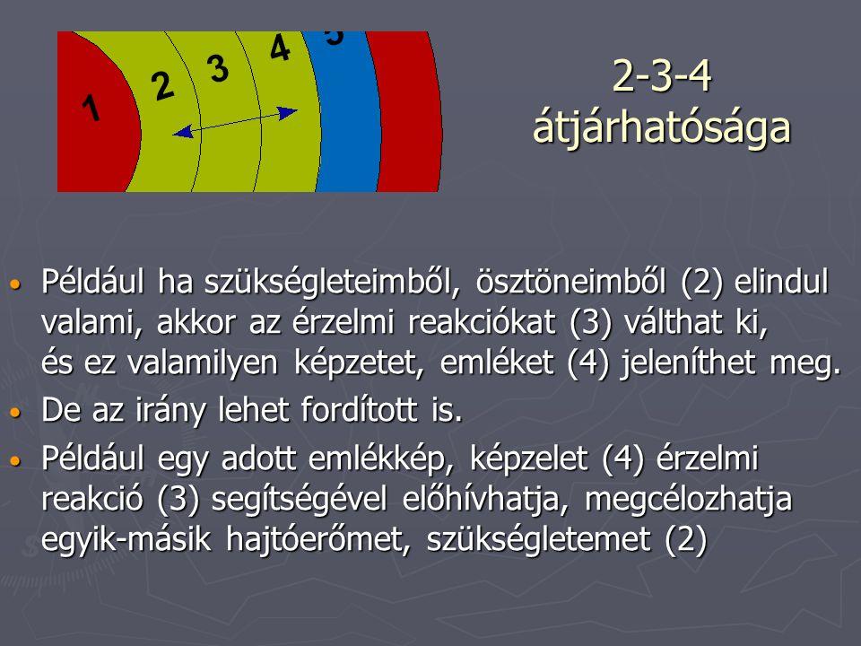 2-3-4 átjárhatósága Például ha szükségleteimből, ösztöneimből (2) elindul valami, akkor az érzelmi reakciókat (3) válthat ki, és ez valamilyen képzetet, emléket (4) jeleníthet meg.