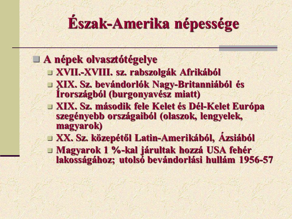 Észak-Amerika népessége A népek olvasztótégelye A népek olvasztótégelye XVII.-XVIII. sz. rabszolgák Afrikából XVII.-XVIII. sz. rabszolgák Afrikából XI