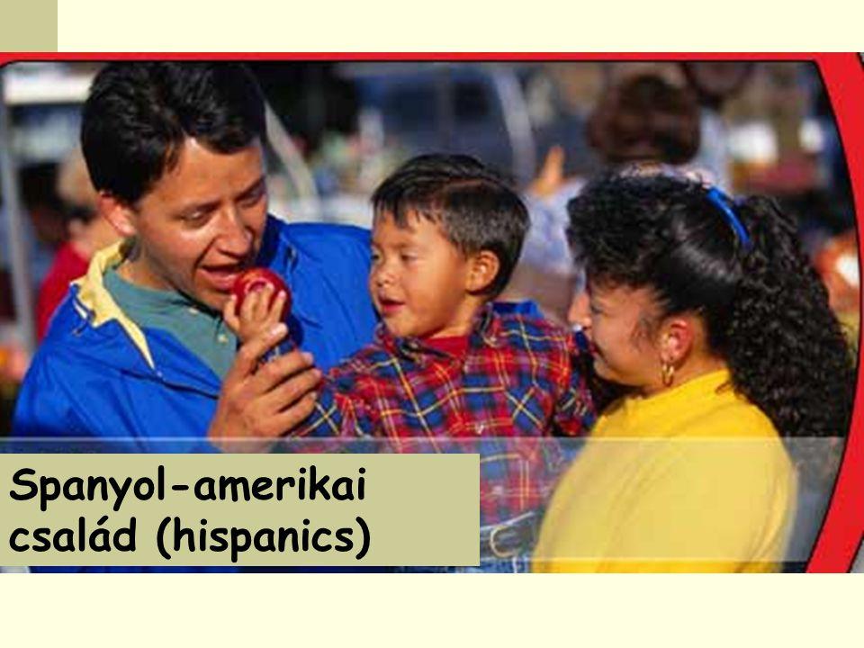 Spanyol-amerikai család (hispanics)