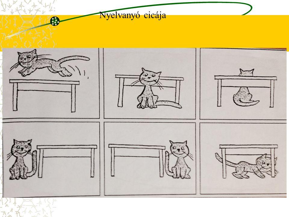 Nyelvanyó cicája