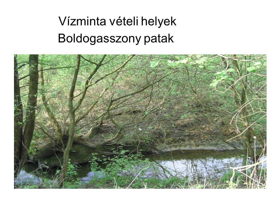 Vízminta vételi helyek Boldogasszony patak