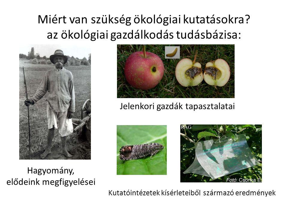 Fogyasztó Környezet - Bioszféra Termelő Kereskedő Az ökológiai gazdálkodás létjogosultsága